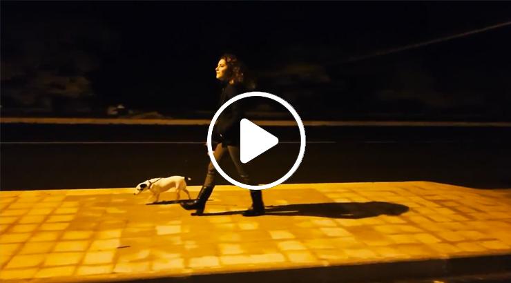 TIMIDAMENTE AMORE - Il FILM Cap 3